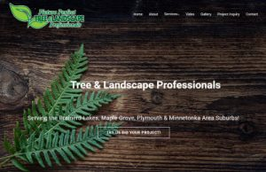Brainerd Tree Service Removal